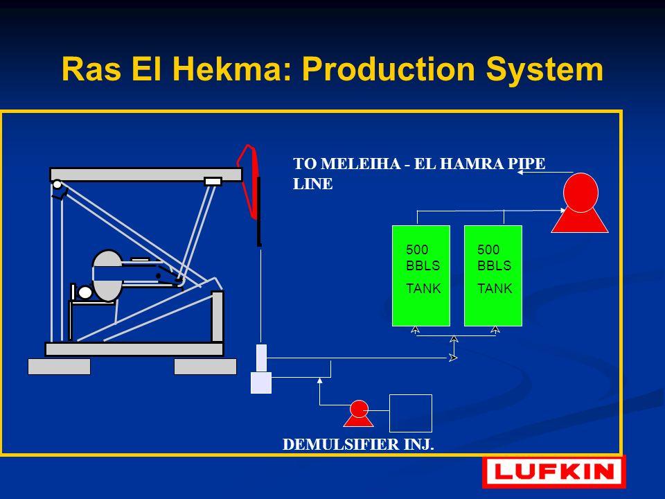 Ras El Hekma: Production System