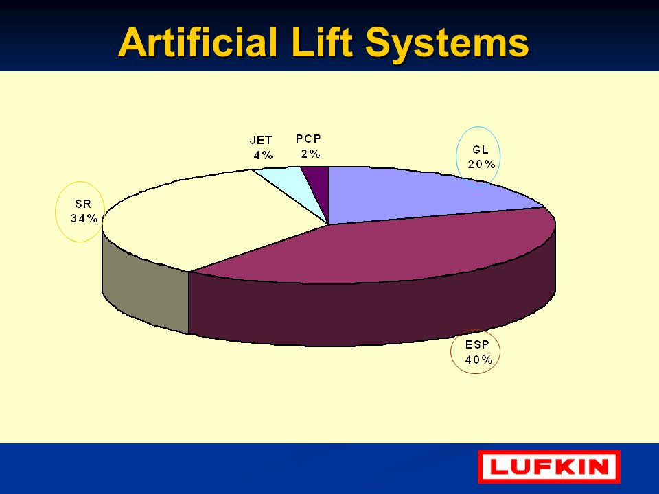 Artificial Lift Systems