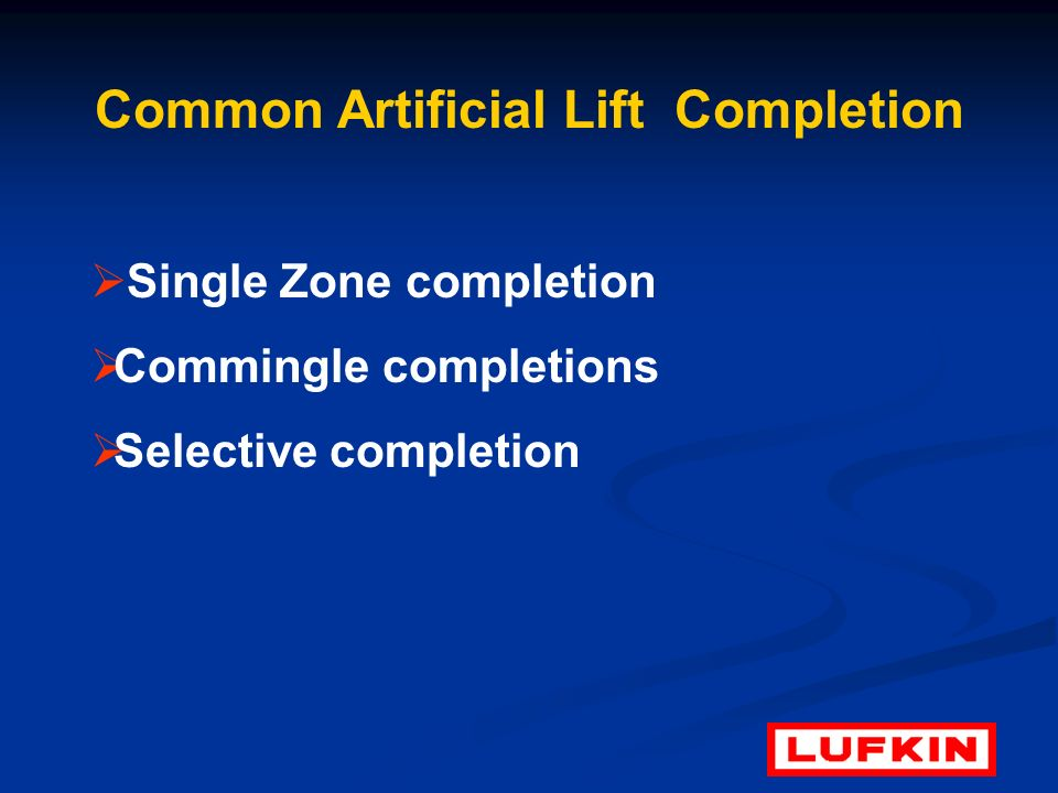 Common Artificial Lift Completion