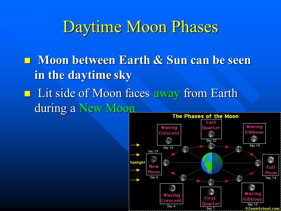 Daytime Moon Phases Moon between Earth & Sun can be seen in the daytime sky.