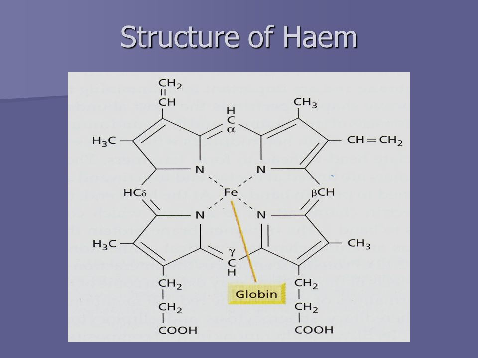 Structure of Haem