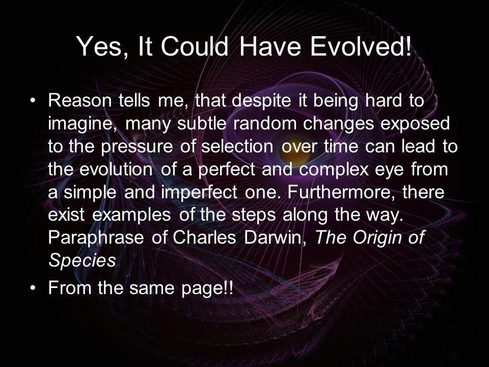 Yes, It Could Have Evolved!