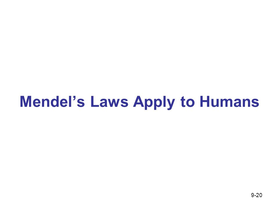 Mendel's Laws Apply to Humans