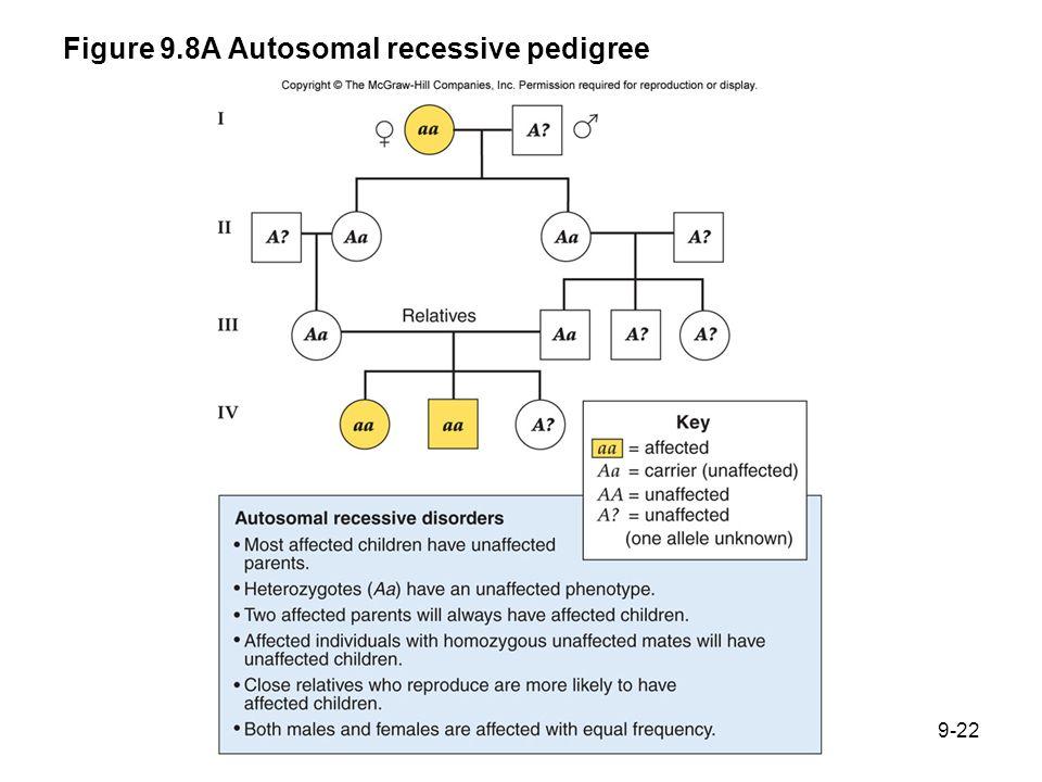 Figure 9.8A Autosomal recessive pedigree