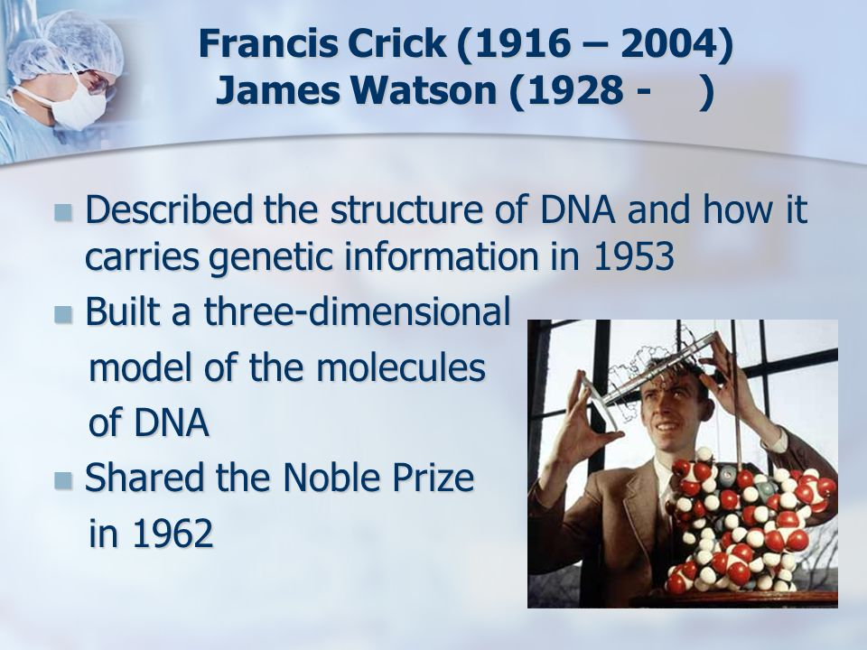 Francis Crick (1916 – 2004) James Watson (1928 - )