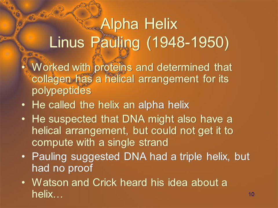 Alpha Helix Linus Pauling (1948-1950)