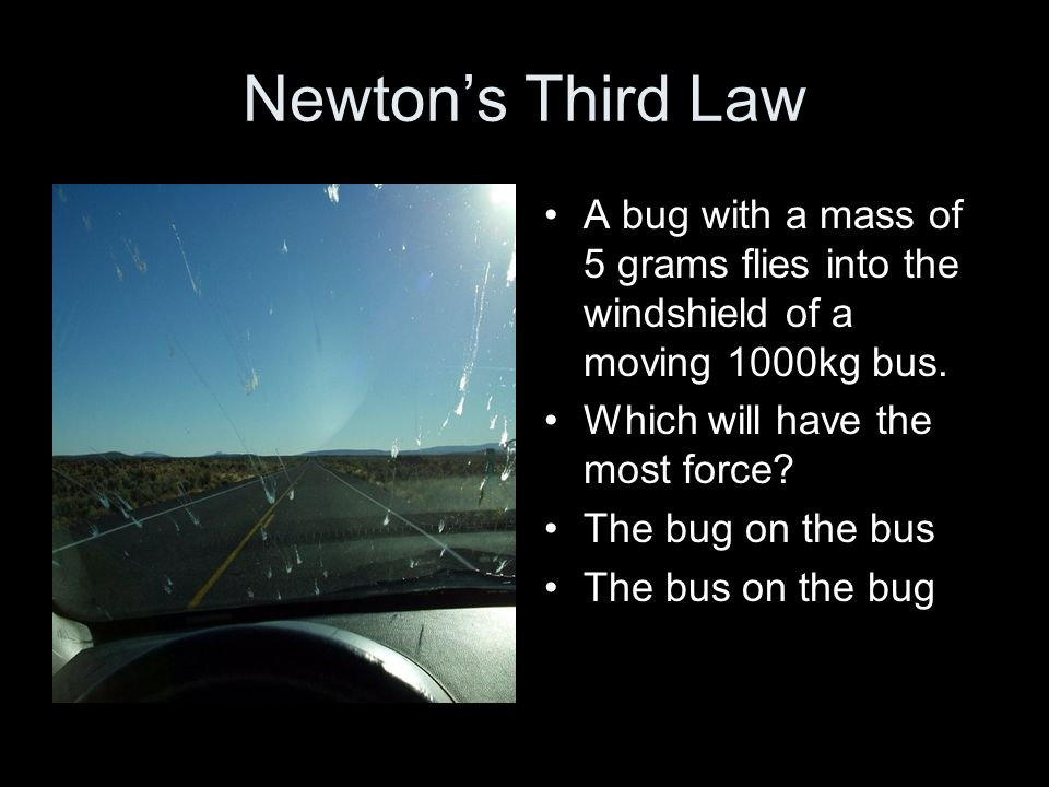 Newton's Third Law A bug with a mass of 5 grams flies into the windshield of a moving 1000kg bus. Which will have the most force