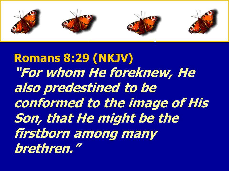 Romans 8:29 (NKJV)