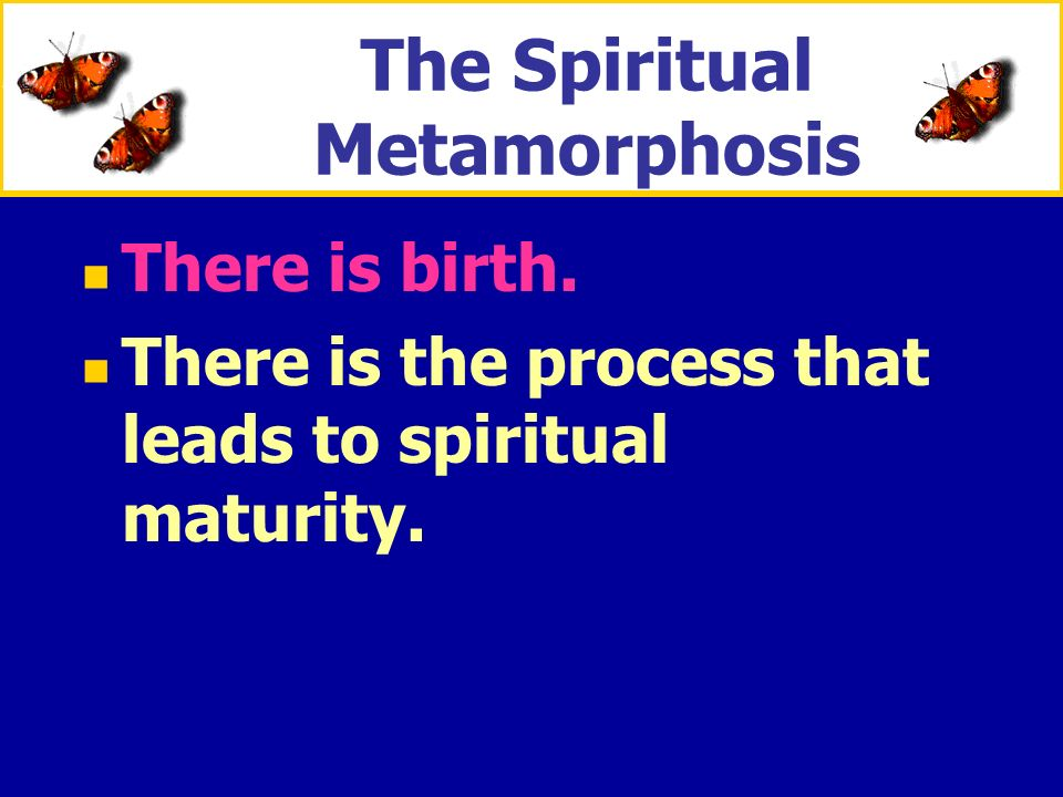 The Spiritual Metamorphosis