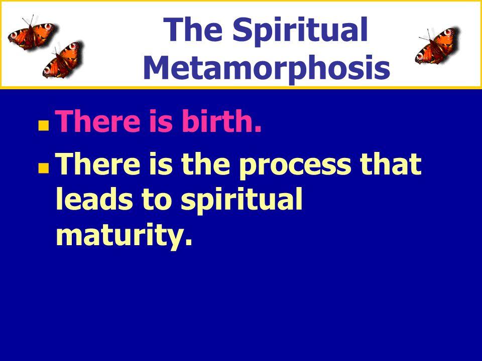 The Spiritual Metamorphosis