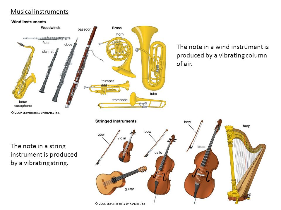 Musical instrumentsThe note in a wind instrument is produced by a vibrating column of air.