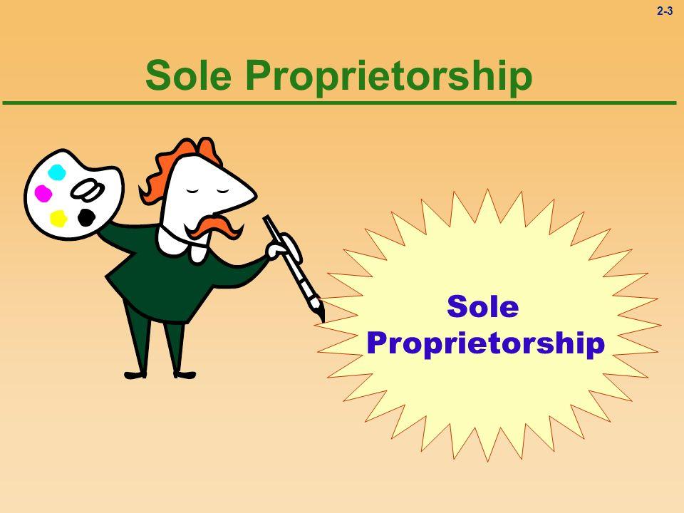 Sole Proprietorship Sole Proprietorship