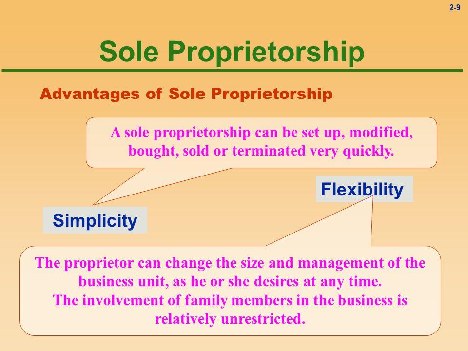 Sole Proprietorship Flexibility Simplicity