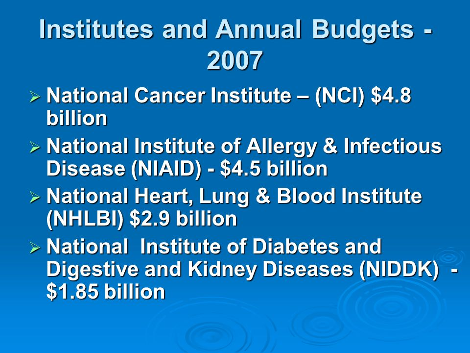Institutes and Annual Budgets - 2007