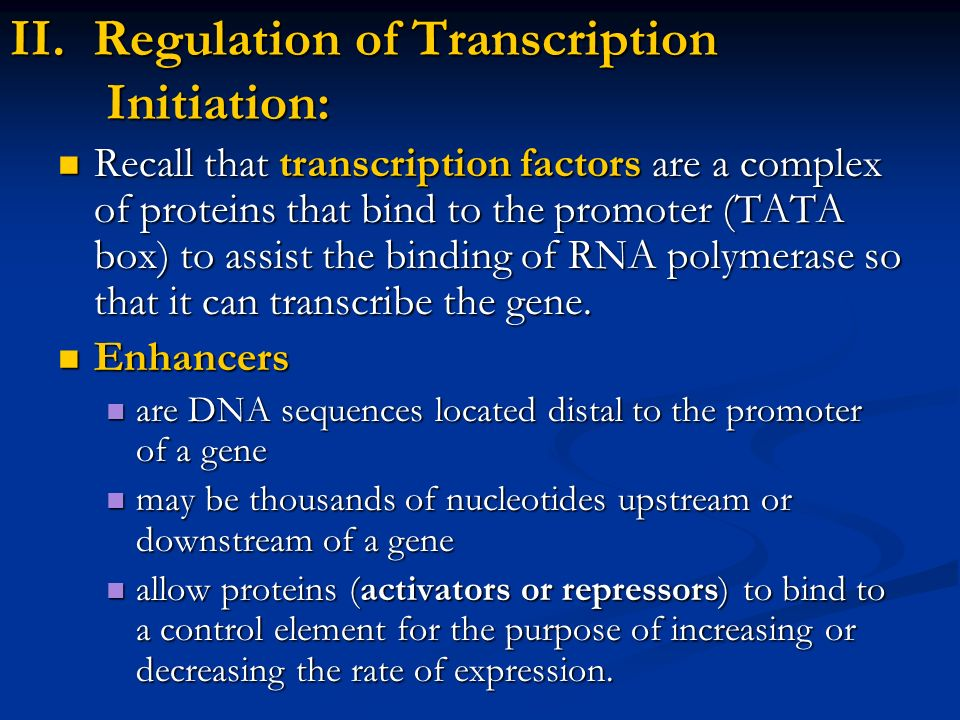 II. Regulation of Transcription Initiation: