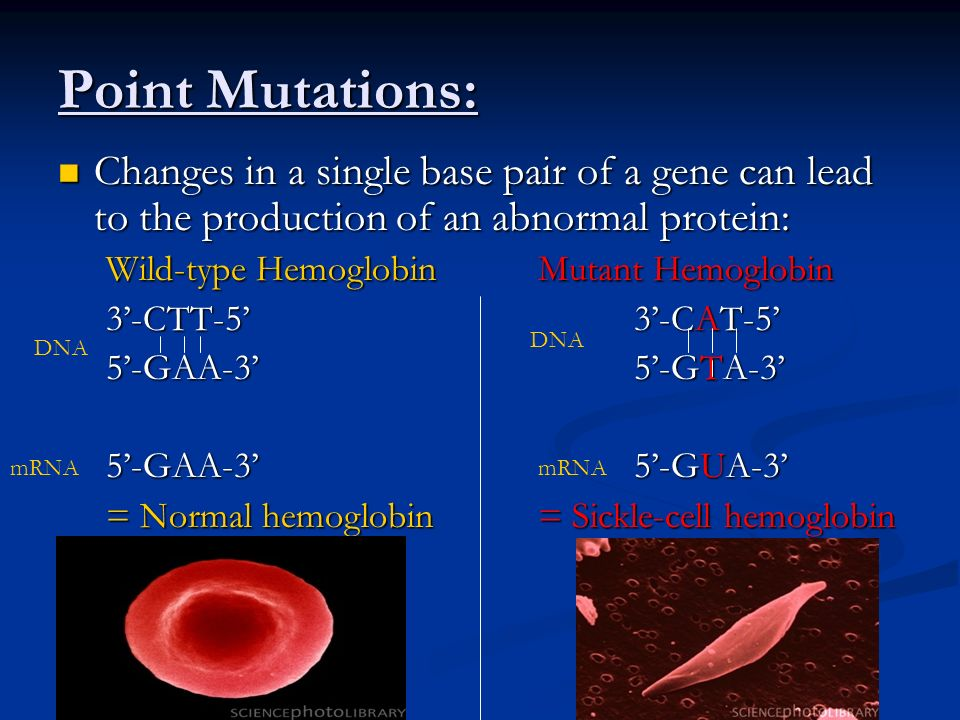 Point Mutations: Changes in a single base pair of a gene can lead to the production of an abnormal protein: