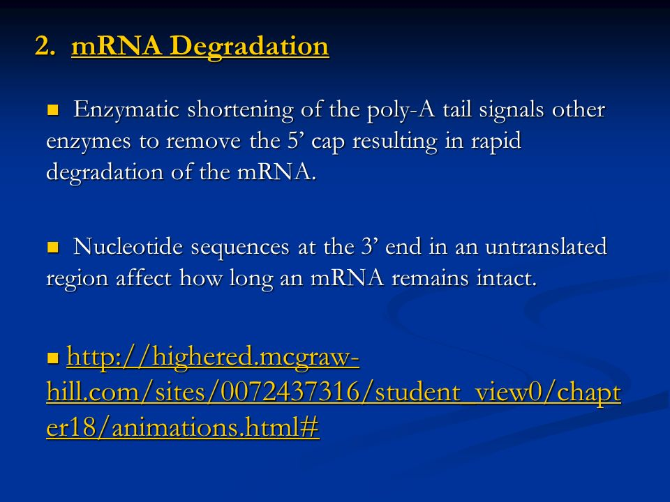 2. mRNA Degradation Enzymatic shortening of the poly-A tail signals other enzymes to remove the 5' cap resulting in rapid degradation of the mRNA.