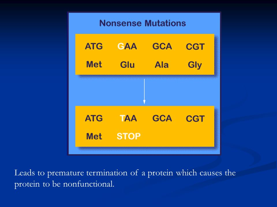 Leads to premature termination of a protein which causes the protein to be nonfunctional.