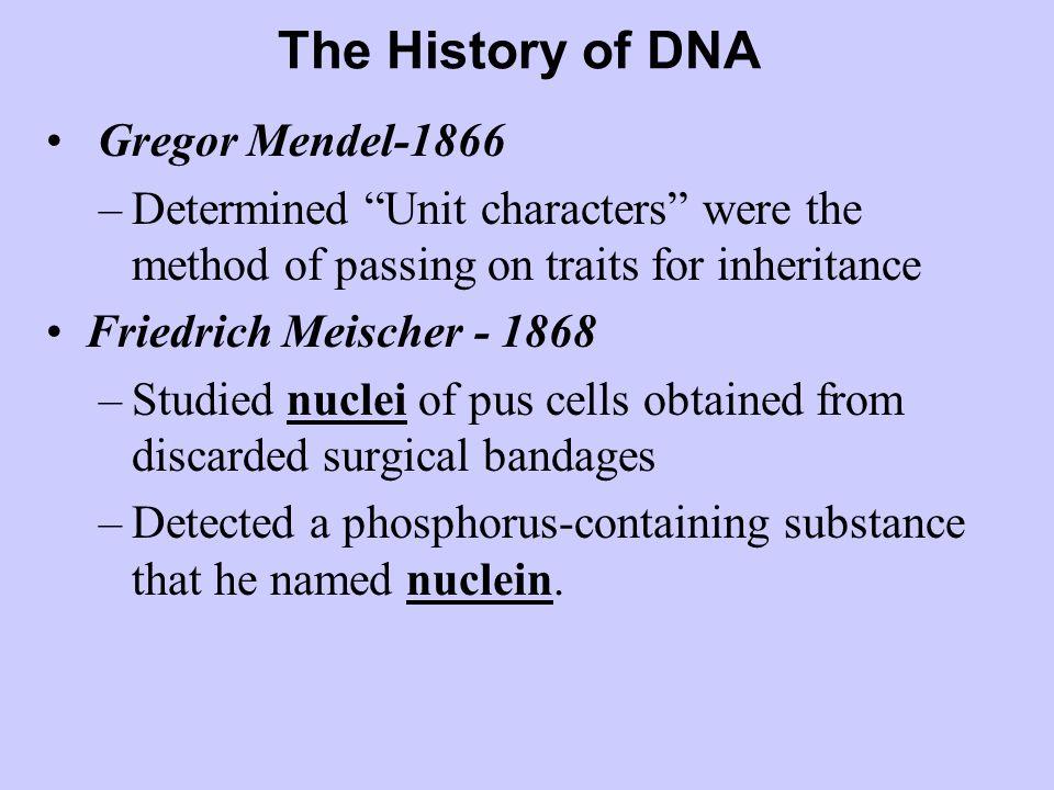 The History of DNA Gregor Mendel-1866