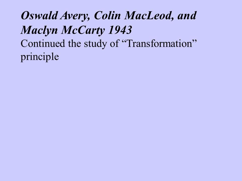 avery macleod mccarty experiment pdf