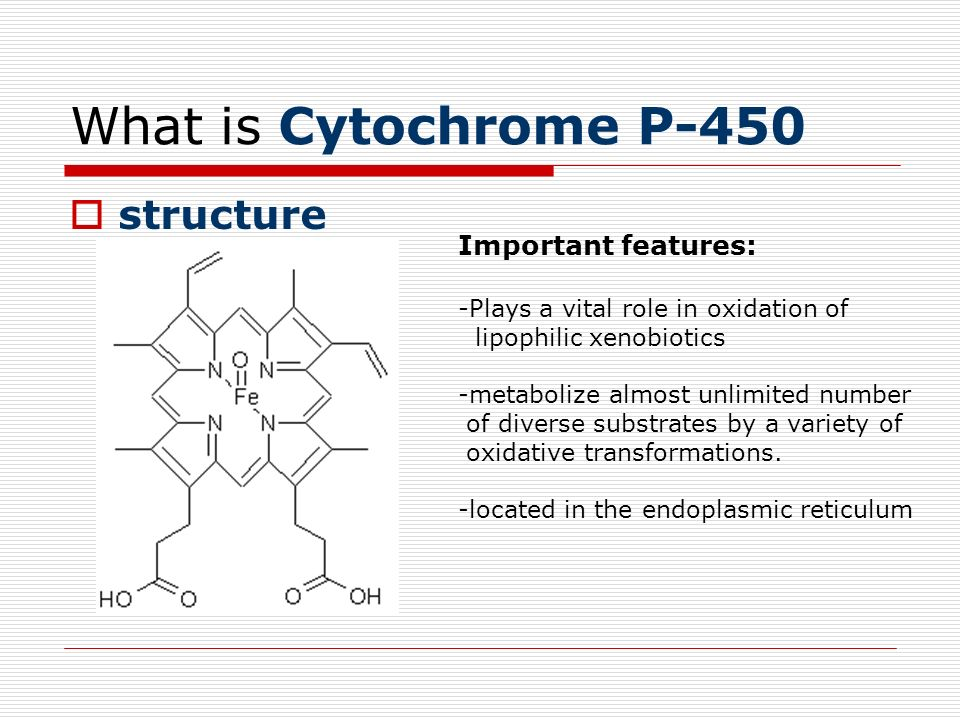 What is Cytochrome P-450 structure Important features: