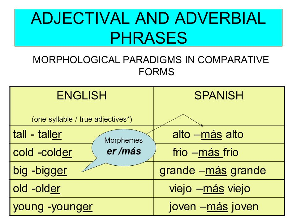 ADJECTIVAL AND ADVERBIAL PHRASES