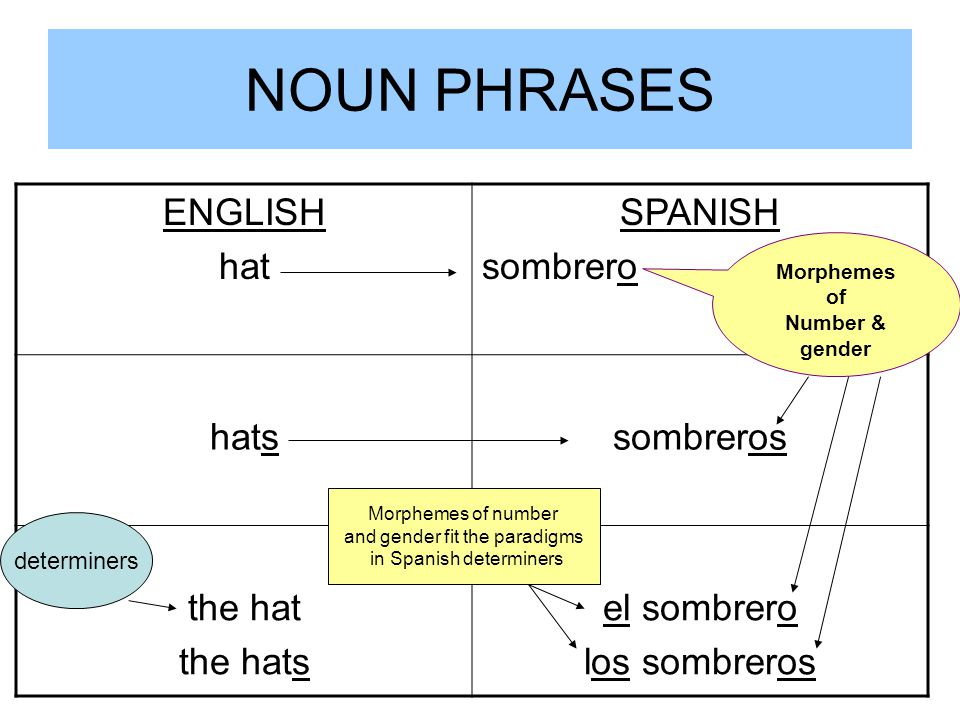 NOUN PHRASES ENGLISH hat SPANISH sombrero hats sombreros the hat