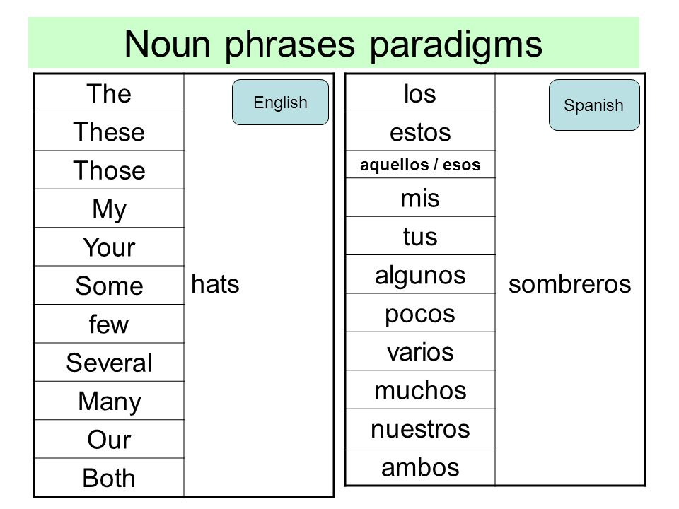 Noun phrases paradigms