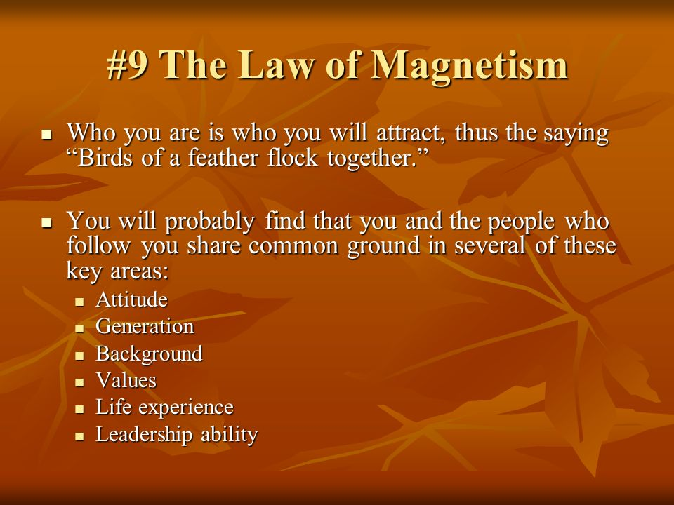 #9 The Law of Magnetism Who you are is who you will attract, thus the saying Birds of a feather flock together.