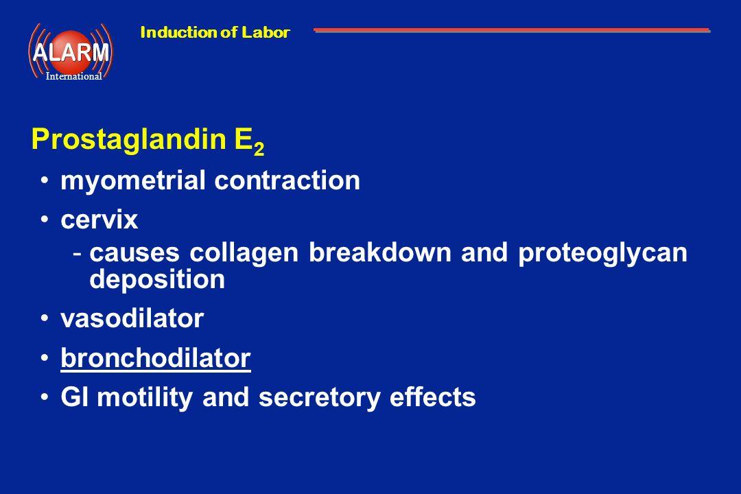 Prostaglandin E2 myometrial contraction cervix