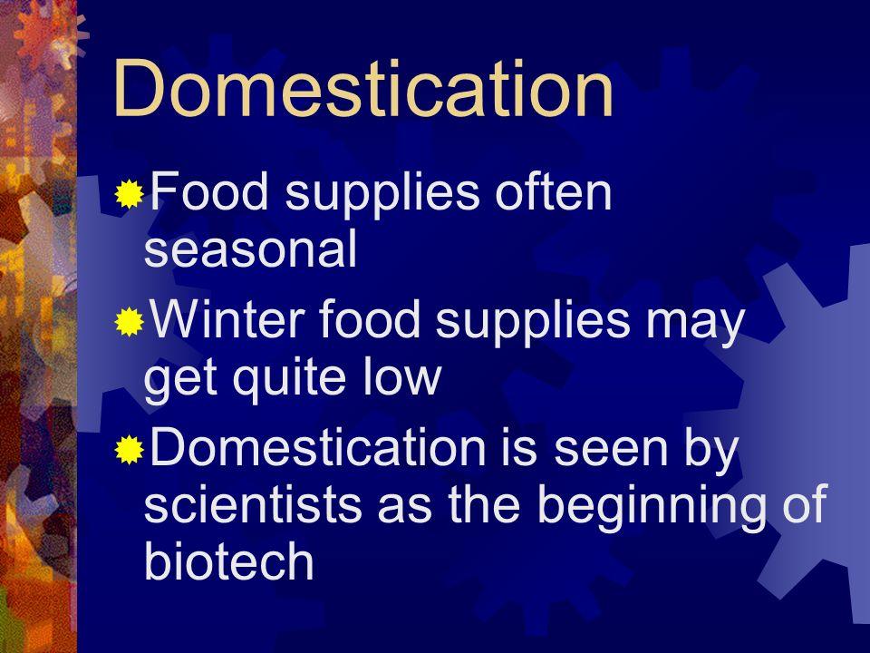Domestication Food supplies often seasonal