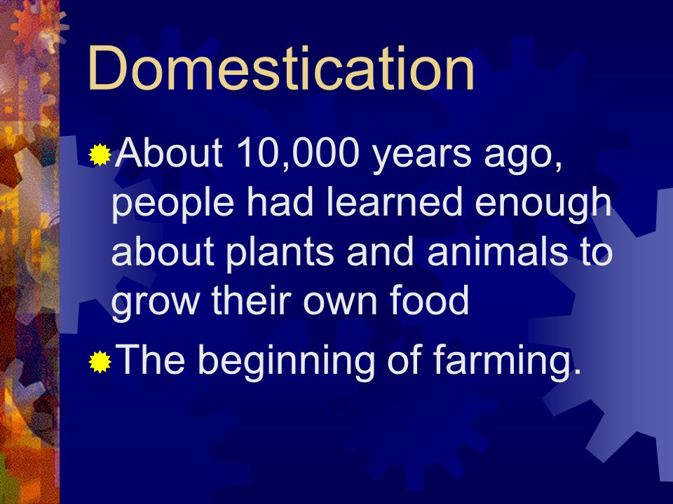 Domestication About 10,000 years ago, people had learned enough about plants and animals to grow their own food.