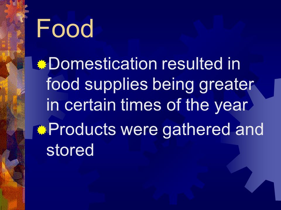 Food Domestication resulted in food supplies being greater in certain times of the year.