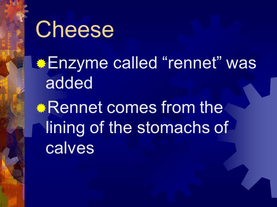 Cheese Enzyme called rennet was added
