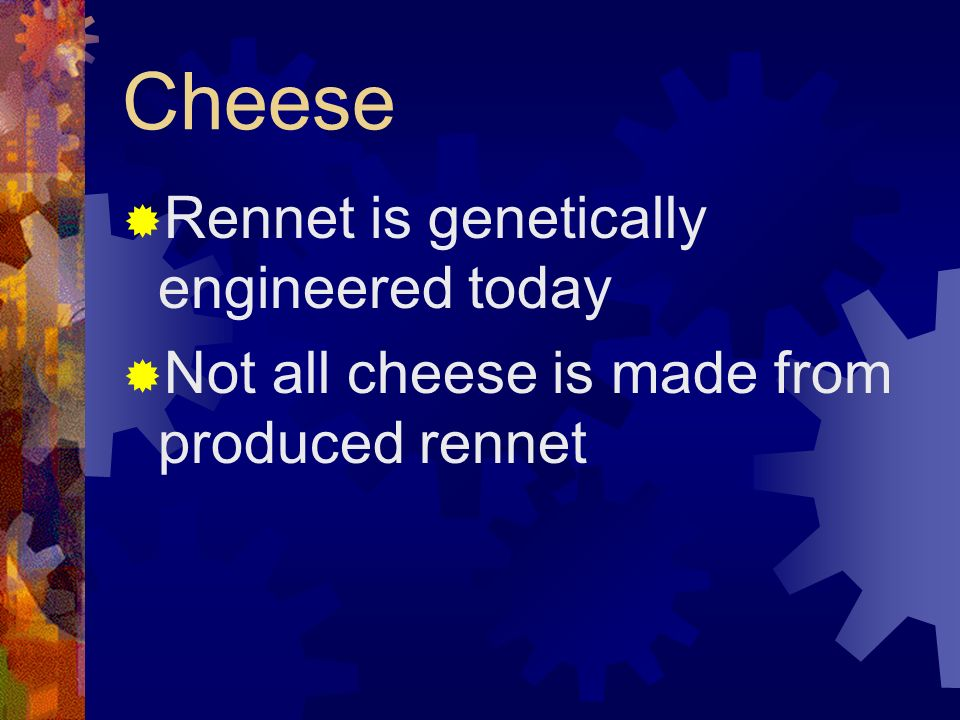 Cheese Rennet is genetically engineered today