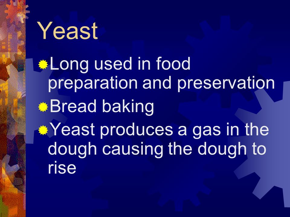 Yeast Long used in food preparation and preservation Bread baking