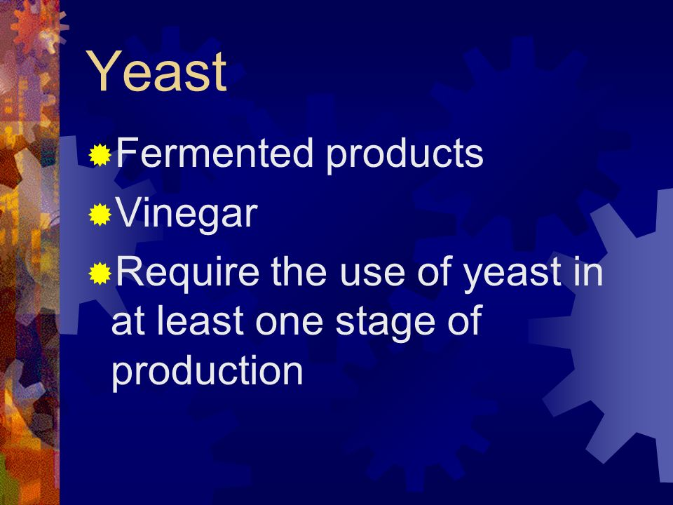 Yeast Fermented products Vinegar