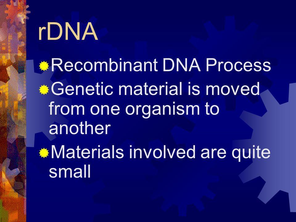 rDNA Recombinant DNA Process