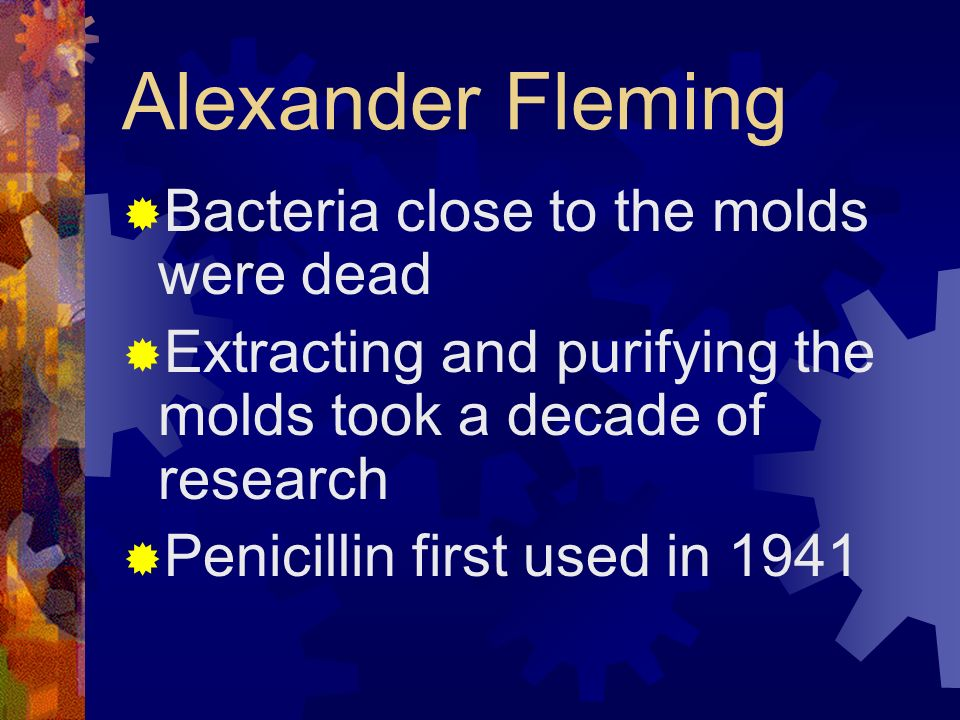 Alexander Fleming Bacteria close to the molds were dead