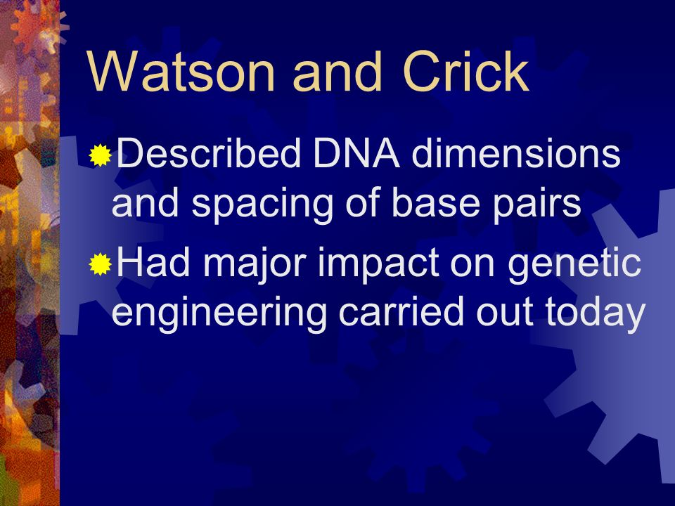 Watson and Crick Described DNA dimensions and spacing of base pairs
