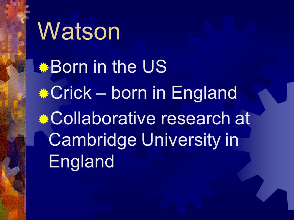 Watson Born in the US Crick – born in England