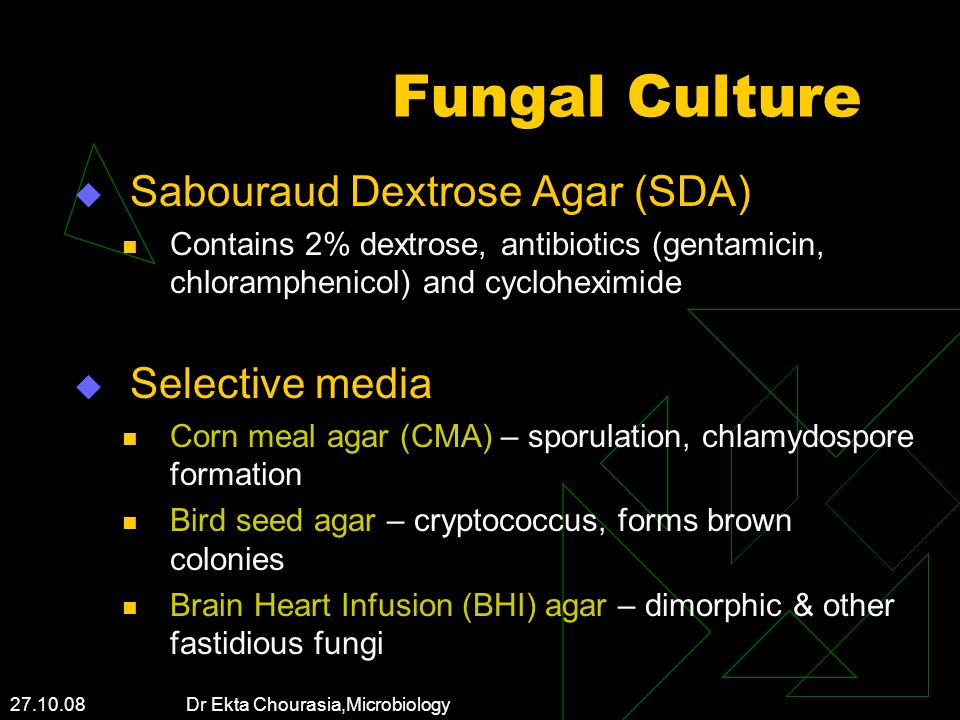 Fungal Culture Sabouraud Dextrose Agar (SDA) Selective media