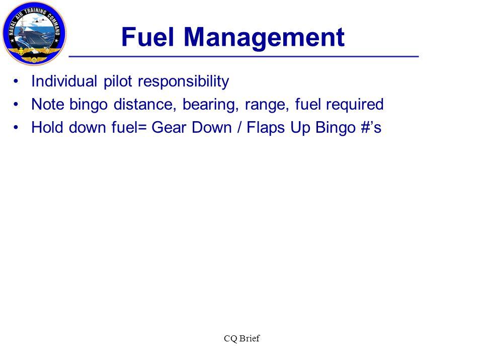 Fuel Management Individual pilot responsibility