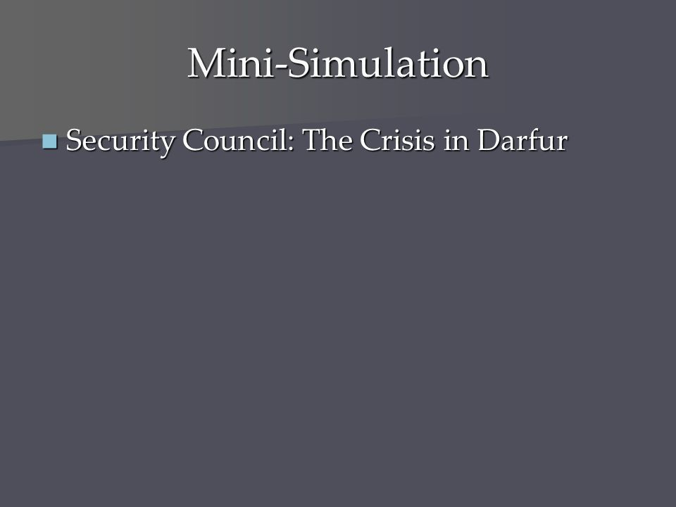 Mini-Simulation Security Council: The Crisis in Darfur