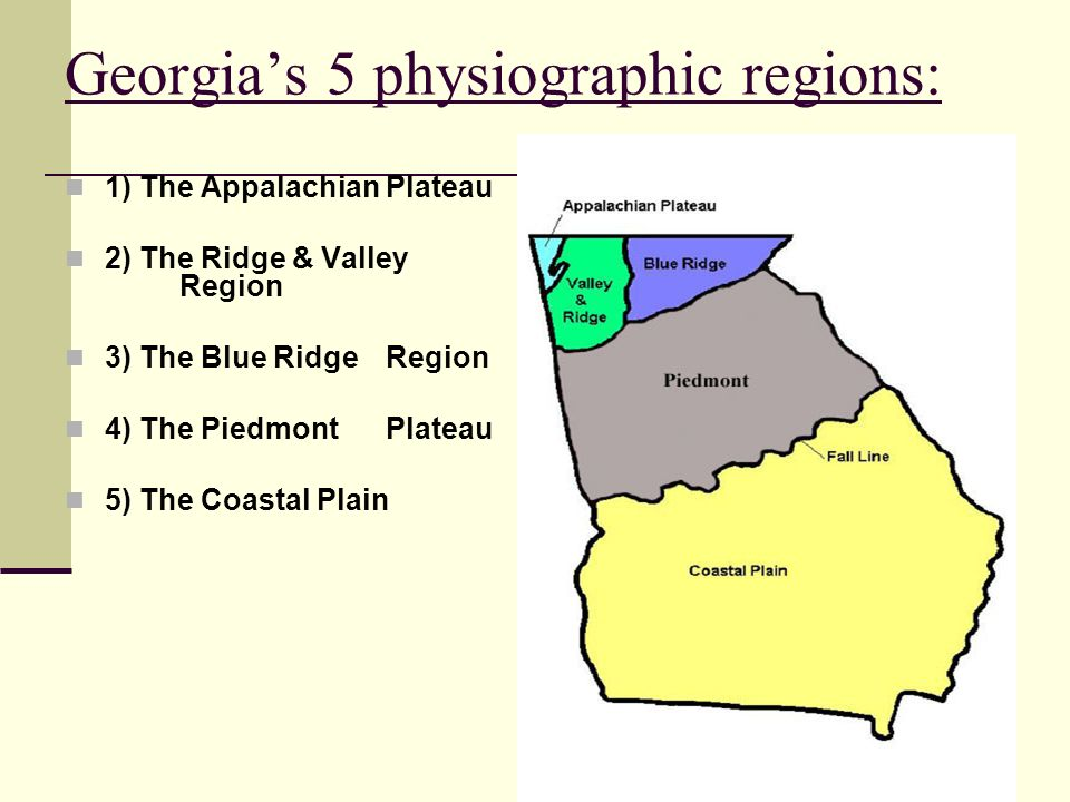 Georgia's 5 physiographic regions: