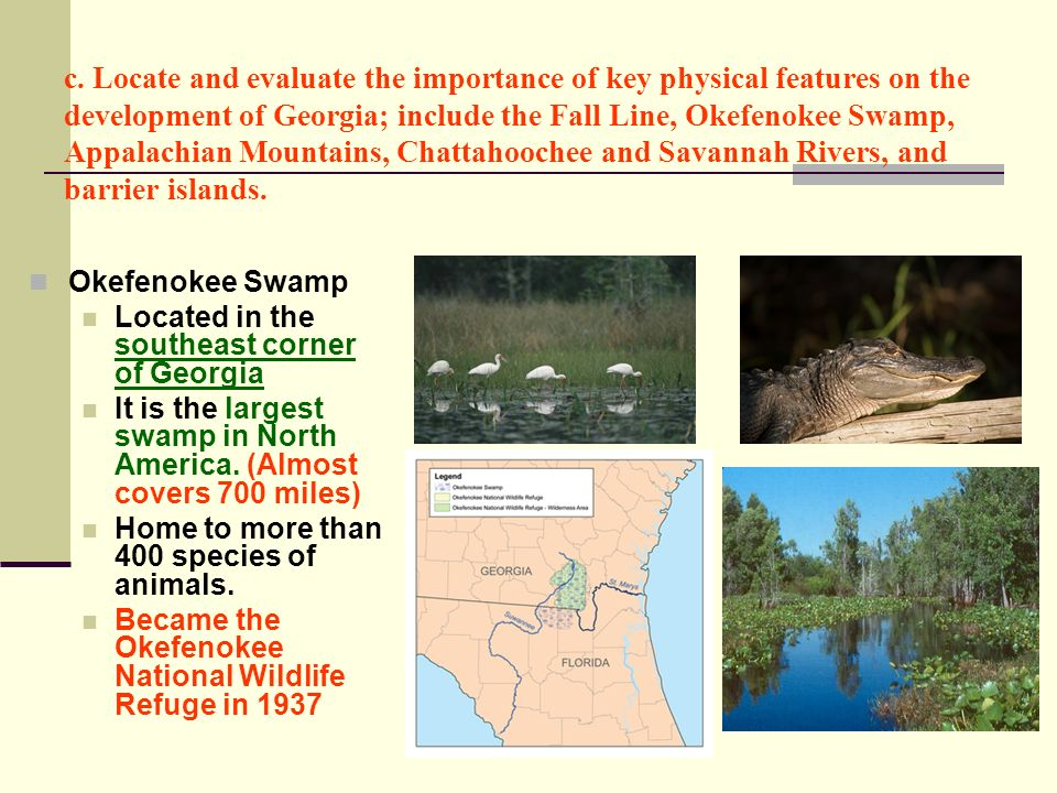 c. Locate and evaluate the importance of key physical features on the development of Georgia; include the Fall Line, Okefenokee Swamp, Appalachian Mountains, Chattahoochee and Savannah Rivers, and barrier islands.