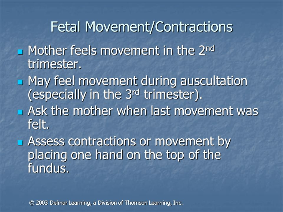 Fetal Movement/Contractions