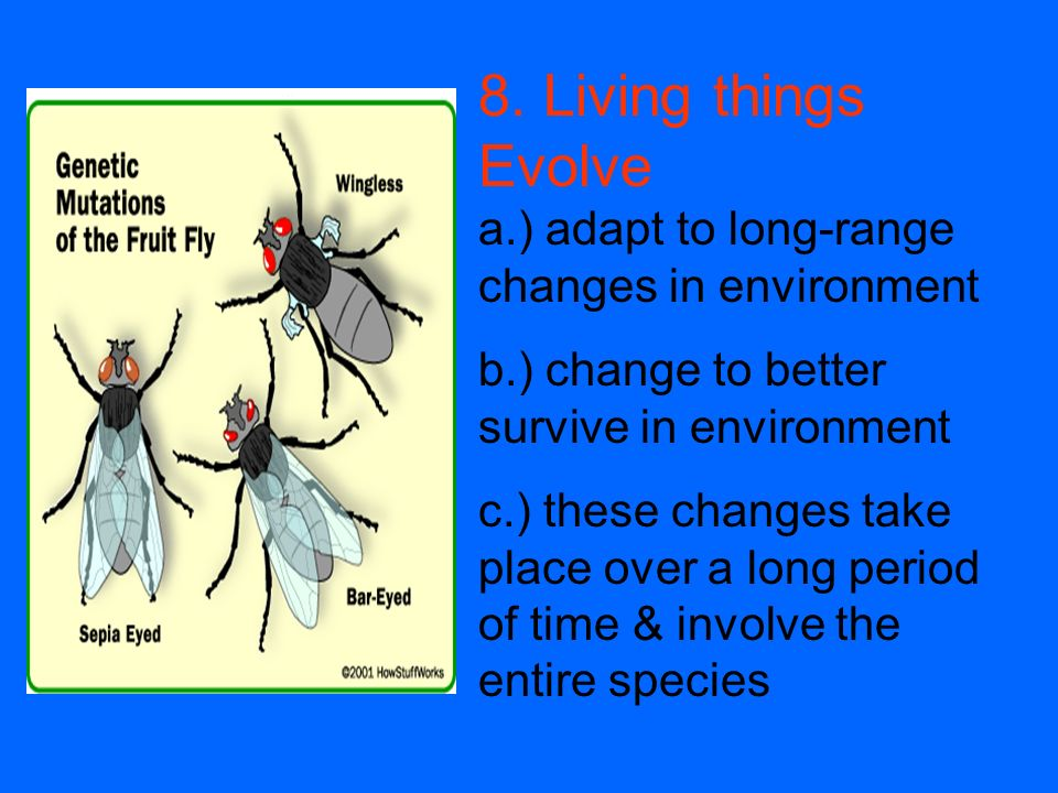 8. Living things Evolve a.) adapt to long-range changes in environment
