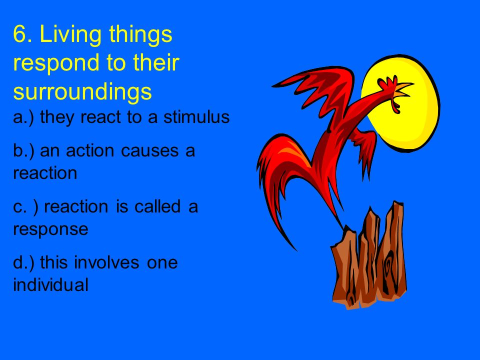 6. Living things respond to their surroundings a