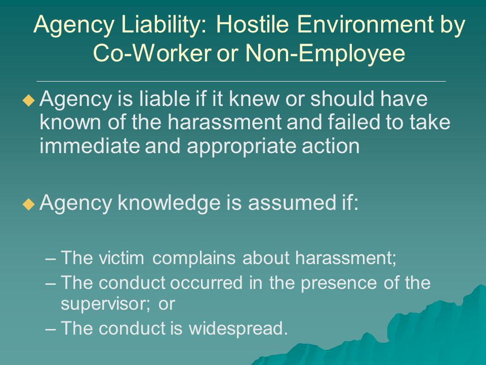 Agency Liability: Hostile Environment by Co-Worker or Non-Employee